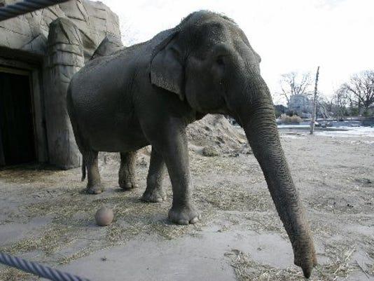 635594442837045915-Zoo-121604-Winky-PB