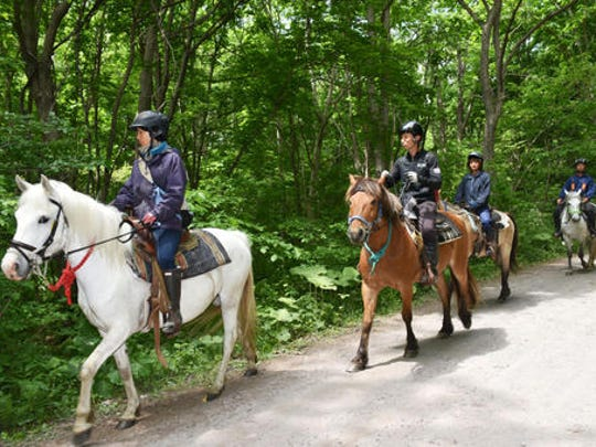 Rescuers on horseback search for a 7-year-old boy who is missing in a Japanese forest in Nanae town, on Hokkaido, the northernmost of Japan's four main islands Monday, May 30, 2016. He has been missing since late Saturday afternoon after his parents reportedly made him get out of the car as punishment. (Ichinoshin Matsuhashi/Kyodo News via AP) JAPAN OUT, MANDATORY CREDIT