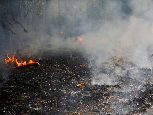 636142357470837453-wildfire.jpg