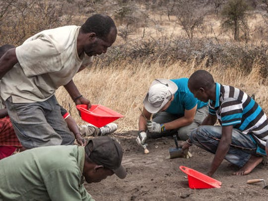 This undated photo provided by Sofia Menconero in December 2016 shows preliminary digging and cleaning operations at the Laetoli site in northern Tanzania, where 14 footprints from a human ancestor, believed to be Australopithecus afarensis, were found. Findings were described in a report released Wednesday, Dec. 14, 2016, by the journal eLife.