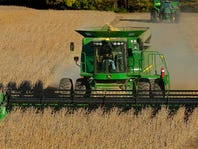 Wisconsin corn and soybean yields fall behind national average