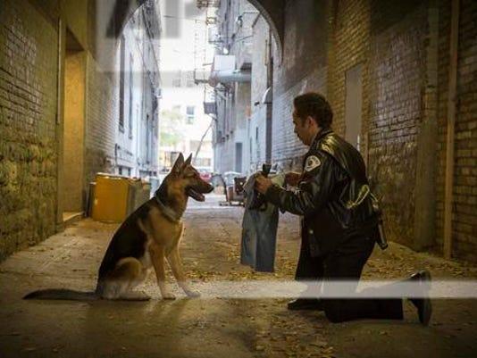 636218308690772993-dogs-purpose.jpg