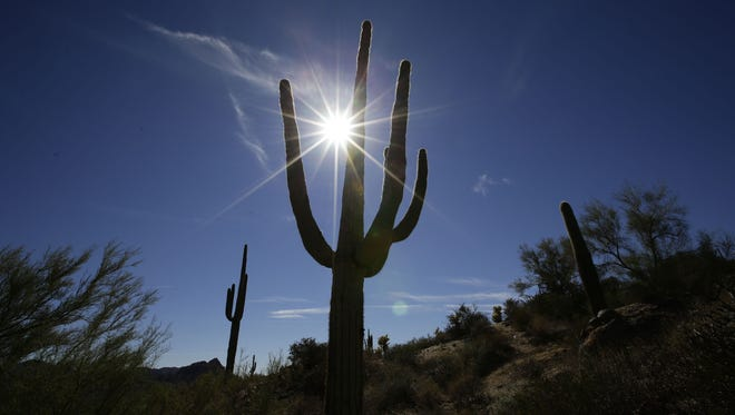 At 116 degrees, Phoenix has tied its record high for July 24 that was set in 2014.