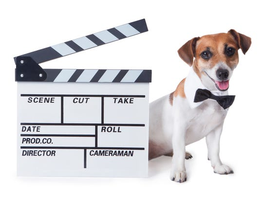 The Little Theatre is hosting a film festival by and