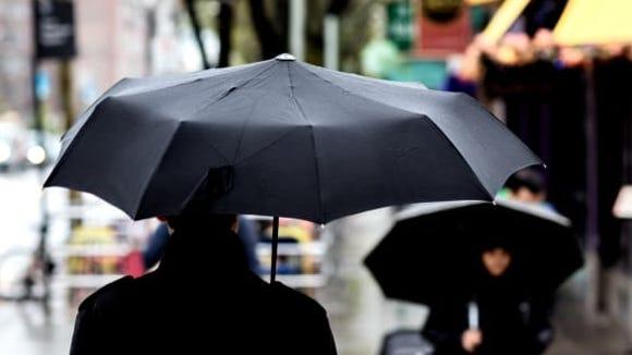 Davek Umbrella