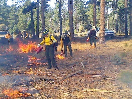 A U.S. Forest Service crew lights and monitors a prescribed burn in the Smokey Bear Ranger District of the Lincoln National Forest.