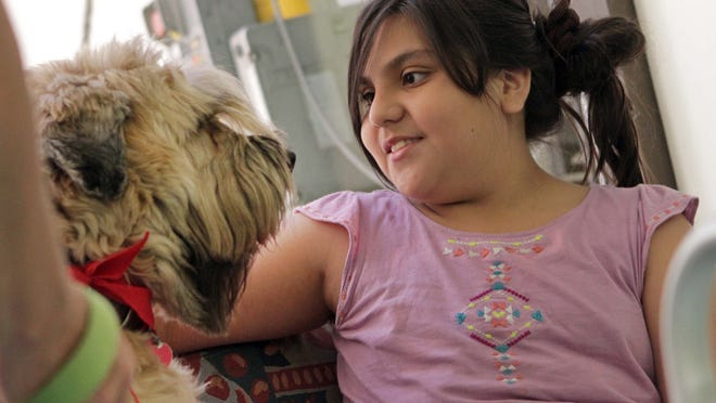 PAWS for People volunteer dog, Buddy, a six year-old Soft Coated Wheaton Terrier, visits with ten year-old Sheila Candia, of Newark, while she waits for a doctor's appointment at A.I. DuPont Hospital for Children, Wednesday, June 4, 2014.