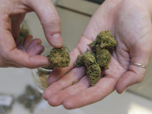 IMG_Medical_Marijuana_Ca_1_1_42BTANE0.jpg_20150912.jpg