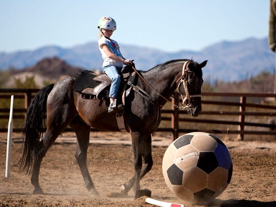 Paso Fino Horse, while he kicks and nudges the ball