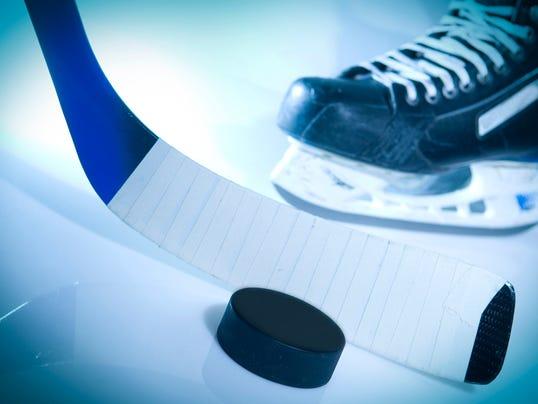 ice hockey stick, puck, skate.jpg