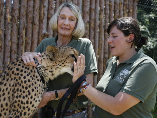 """Cathryn Hilker, founder of the Cat Ambassador Program at the Cincinnati Zoo and Botanical Garden, is photographed with her """"sweet"""" Sara, a ten-year old Cheetah, and Linda Castaneda, coordinator and lead trainer for the Cat Ambassador Program, at the zoo's Cheetah Encounter May 25, 2010."""