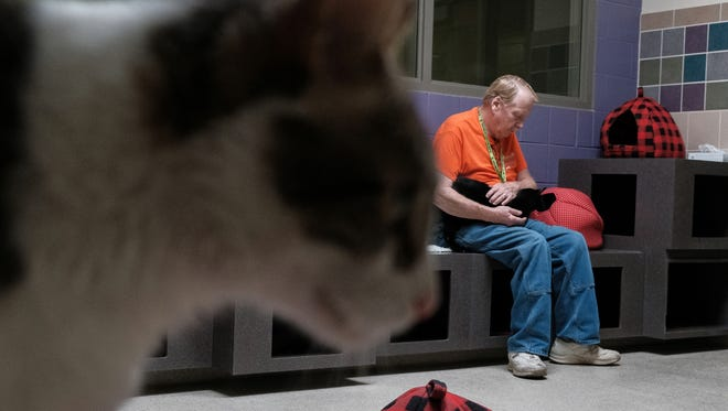 John Little of Madison Heights pets a cat in the Kitty City adoption room at the new $15.5 million dollar Oakland County Animal Shelter & Pet Adoption Center in Pontiac on Wed., Oct. 4, 2017 following a ribbon cutting ceremony.