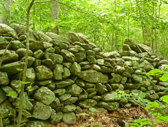 Stone walls on the slopes of the Blue Ridge in Augusta