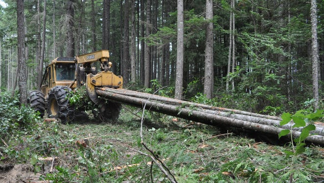 A log skidder pulls trees cut in Newberry Hill Heritage Park in 2014.