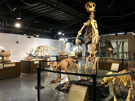 science-museum-1.jpg