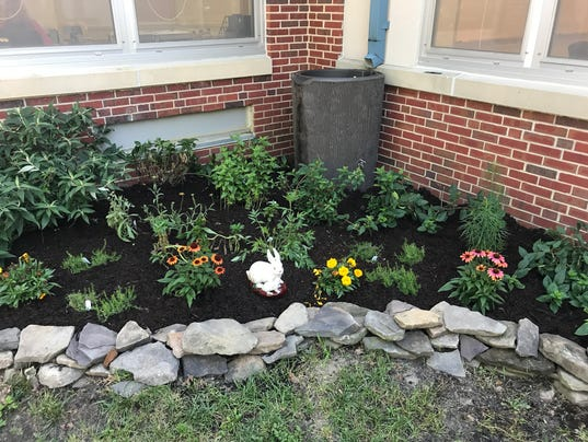 Memorial-School-Eatontown-rain-garden.JPG