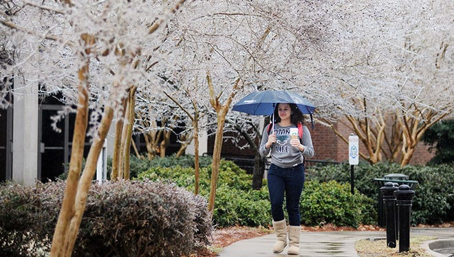 Ice is visible on trees as a pedestrian walks on the University of Mississippi campus, in Oxford, Miss. on Monday, Feb. 16, 2015.