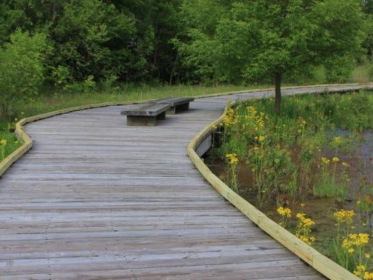 Boardwalk in John Craddock Wetland Nature Preserve.jpeg