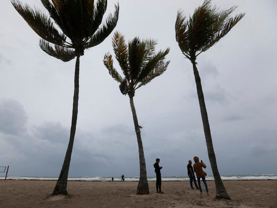 People stand next to palm trees as they look at churning