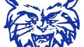 GIRLS' VOLLEYBALL, OCT. 21: 'Cats upset 'Dogs