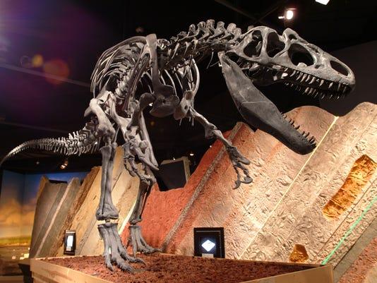 636090351905926919-Journey-Museum-Learning-Center-dinosaur-skelton-Journey-Museum-Learning-Center.jpg