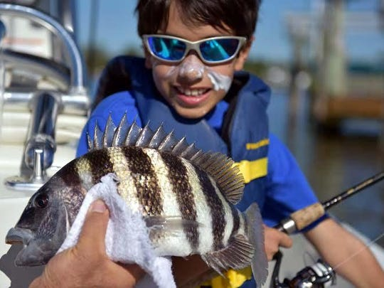 Oliver Zema of Stephentown, N.Y. was guarding against the Florida sun when this convict-stiped sheepshead stole the show in Tarpon Bay, while fishing with his mom and Ed Zee.