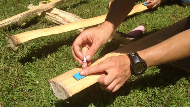 The Earthworks Institute will hold a two-day workshop on April 9 and 10 on skills in bow making.