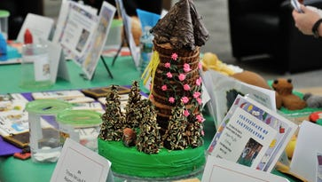 Rapunzel 2010 version by Tatyana Van Loo and Family of Rutherford was on display at the annual Edible Book Festival held at the Rutherford Public Library on Saturday.