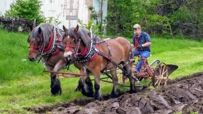 Ricky LaValley rides on a plow behind two draft horses. LaValley was posthumously inducted into the Iowa Draft Horse Hall of Fame.