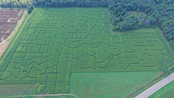 An aerial view of Trzebiatowski's Corn Maze, 7580 Portage County BB in Bancroft, from 2016. The family that runs to maze say they will close in 2017.