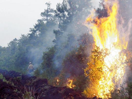 635954503038249025-forest-fire-web.jpg