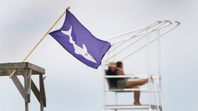 A shark flag hangs out at Duxbury Beach indicating there is now swimming with a predator seen in the water.  Duxbury Beach was closed to swimming for  second day after a great white shark was seen feeding off a whale carcass floating off the beach on Monday, Sept. 2 , 2019  Greg Derr/The Patriot Ledger