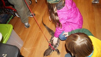 Kids can meet reptiles at the Domes.