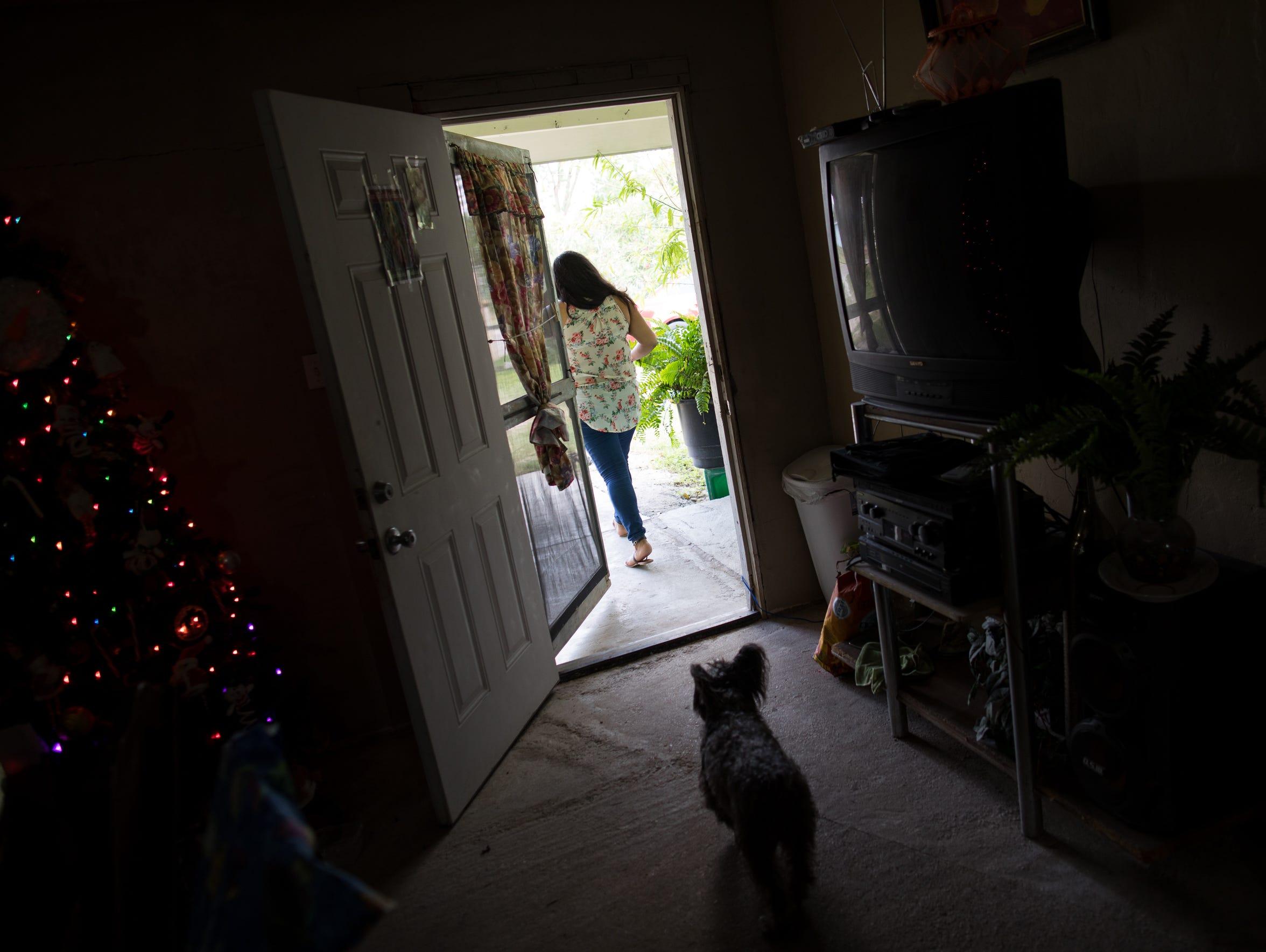 Mia Maria Hernandez's dog follows her as she walks