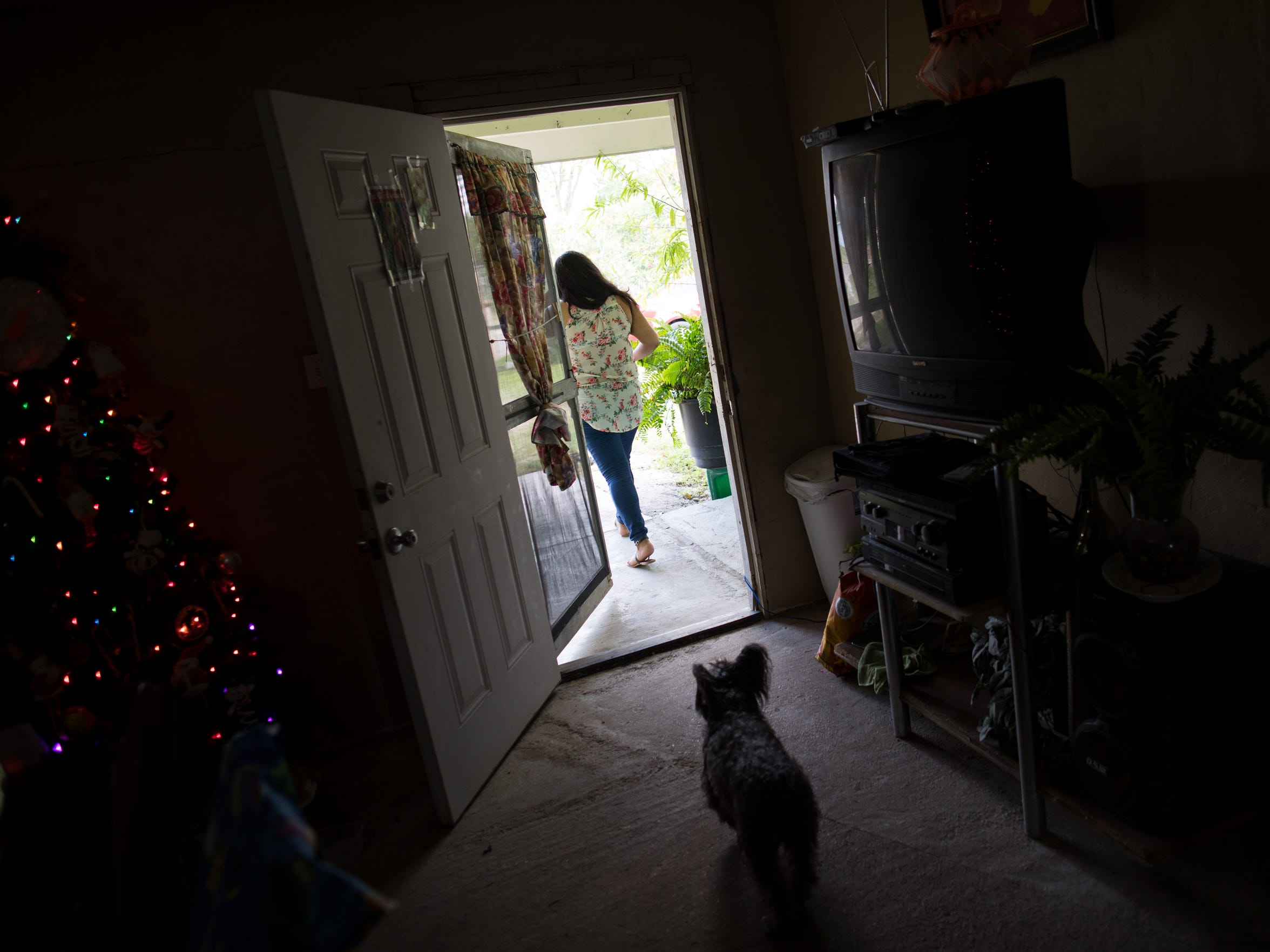 Mia Maria Hernandez's dog follows her as she walks out the front door of her mothers home in Alamo Texas on Saturday, Nov. 4, 2017. Maria had driven down from Kingsville Texas to attend her mothers 50th birthday party.