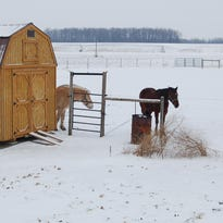 Clothing hangs inside the Amish home after freezing on the outside line.