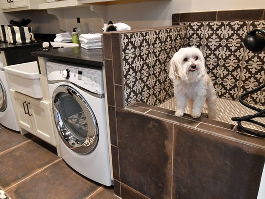 A tiled dog wash is built into the laundry room at