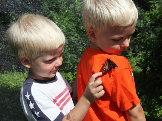 Nature-inspired activities will keep the kids busy