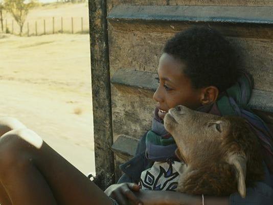 Lamb movie art