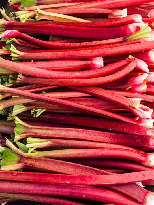 Rhubarb stems harvested ready to eat