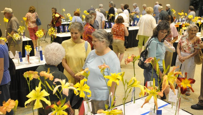 This year's Daylily Show is set for Saturday at Lake Terrace Convention Center.