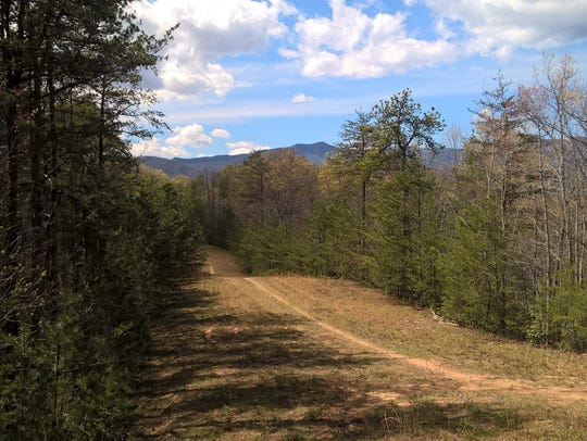 The 90-acre Goodson property near Old Fort has been