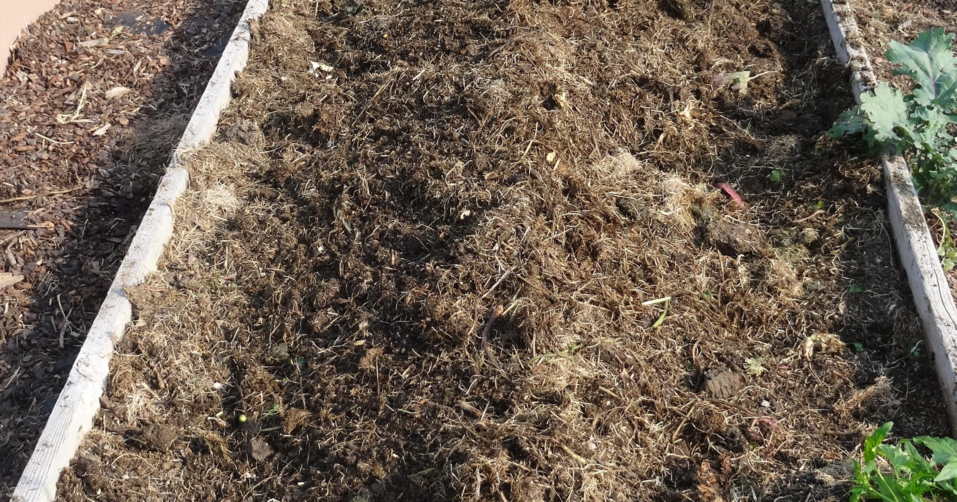 Tend to soil now to have great gardens next spring