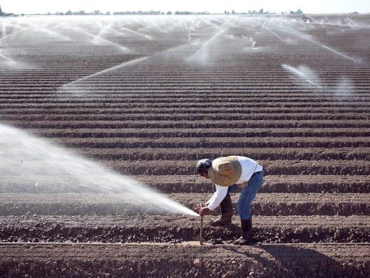 Jose Lopez repairs a sprinkler head in a lettuce field west of Yuma, Arizona.