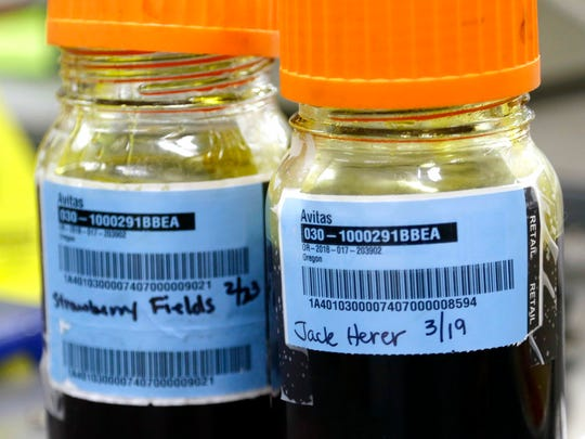 In this March 30, 2018, photo, jars of marijuana oil