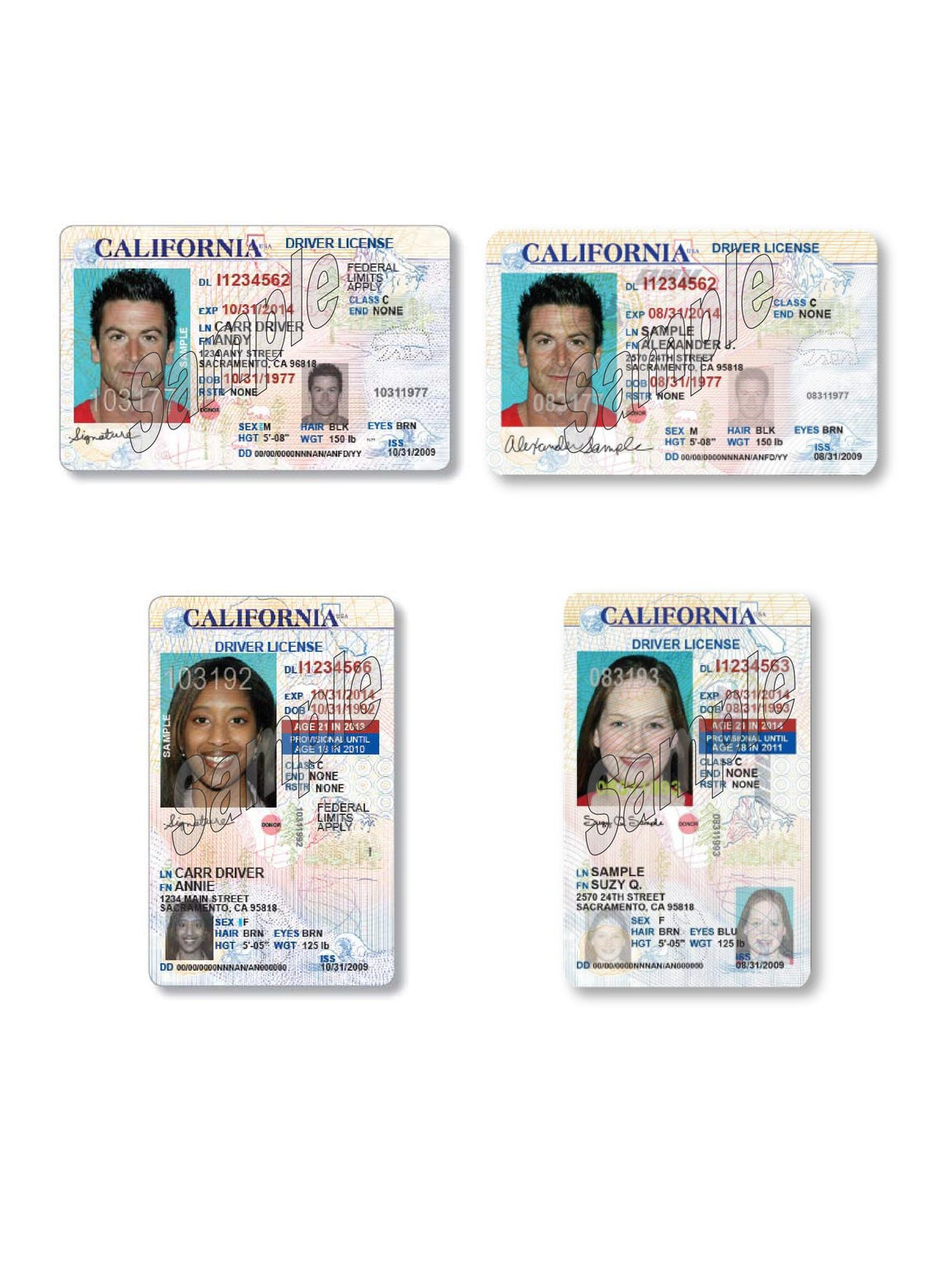 Immigrant Driver's License Law Brings Freedom