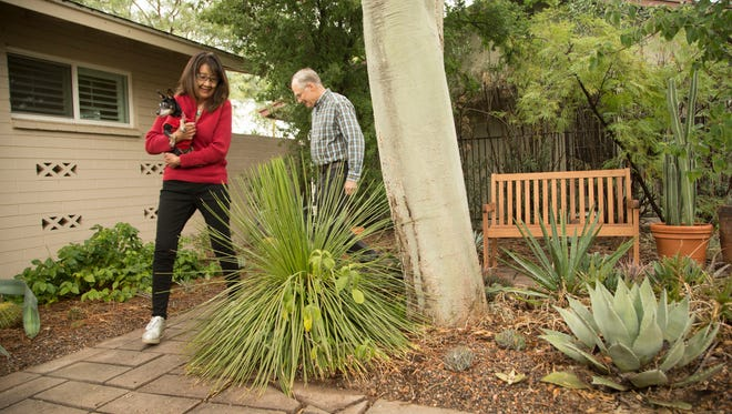 Mike and Philomena Bell are 30-year Tempe residents who took advantage of a city rebate to redo the landscape in their home to conserve more water.