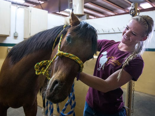 Following the workout, Sam Condon gives a yearling some ear rubs at the Loma Vista Farm, in north Scottsdale, as part of Scottsdale Community College's equine-science program, on Tuesday, Mar. 25, 2014.