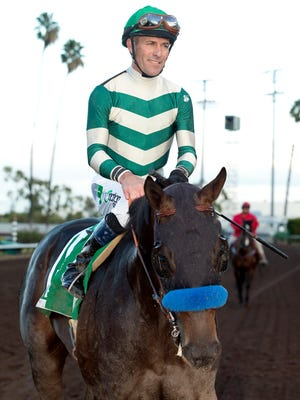 Michael Lund Petersen's Mor Spirit and jockey Gary Stevens return to the winner's circle after their victory in the Grade I, $350,000 Los Alamitos Futurity, Saturday, December 19, 2015 at Los Alamitos Race Course, Cypress CA.