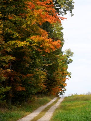 Leaves were starting to turn in north central Ohio in this 2014 photo.